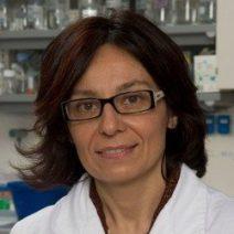 Claudia Bagni, PhD, at University of Rome, FRAXA research grant