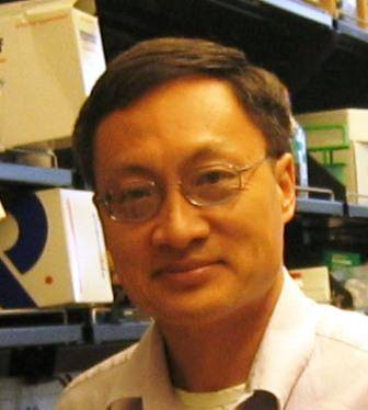 Fen-Biao Gao, PhD, at University of California at San Fransico, FRAXA research award