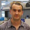 Andres Ozaita, PhD — University Pompeu Fabra