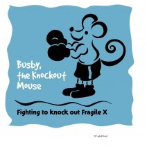 Fragile X knockout mouse