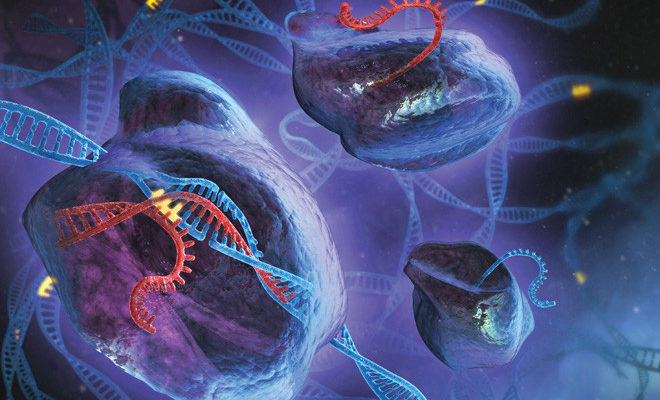 CRISPR – Does it hold promise for Treatment of Fragile X Syndrome?