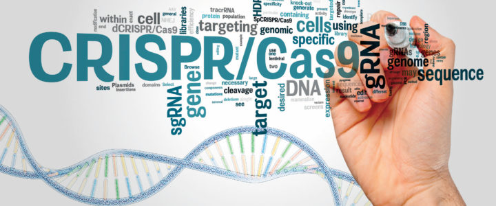 Can CRISPR Cure Fragile X Syndrome?