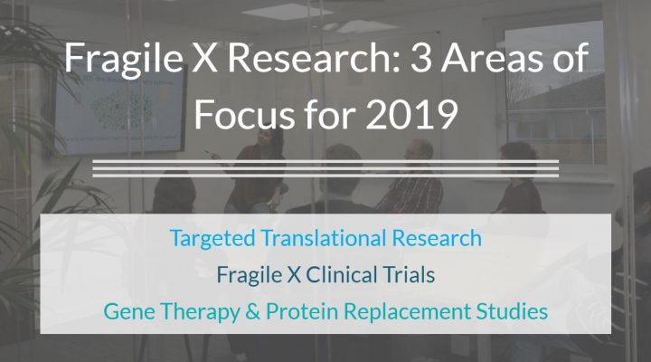 Fragile X Research: 3 Areas of Focus