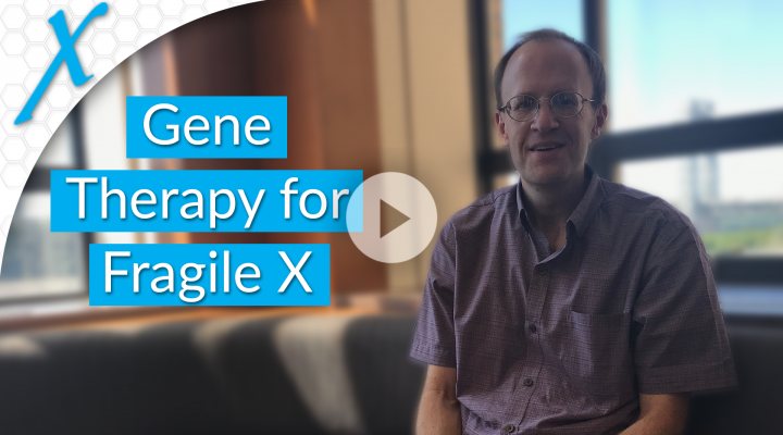 Gene Therapy Translational Studies for Fragile X Syndrome